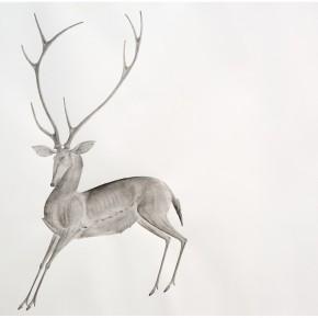 "16 Tang Hui ""Deer 2014 1"" water soluble pencils on paper 109 x 79 cm 2014 290x290 - Tang Hui"