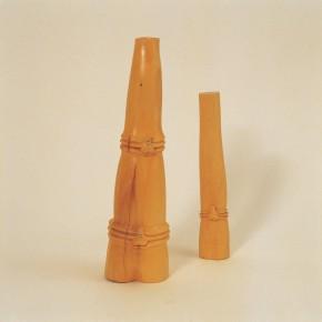 "162 Tang Hui ""Tang Town Project – Shanghai Biennial"" the Bamboo Shoot 2002 290x290 - Tang Hui"