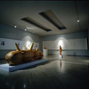 "177 Tang Hui, View of ""Tang Town Project – Shanghai Biennial"", 2002"