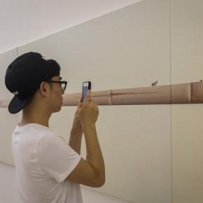 """04 Installation View of Shi Jing Wu Didi 290x290 - Chambers Fine Art Beijing presents """"Shi Jing & Wu Didi"""""""