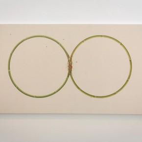 """11 Installation View of Shi Jing Wu Didi 290x290 - Chambers Fine Art Beijing presents """"Shi Jing & Wu Didi"""""""