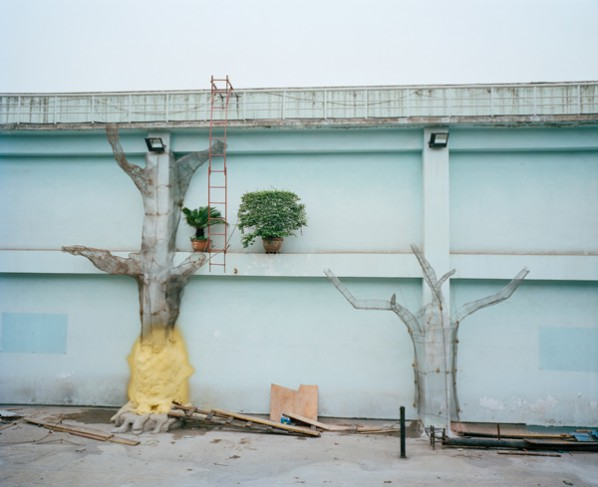 HWC-02 The Wall  (Photographer  Hua Weicheng), Work from Damaged Landscape 05