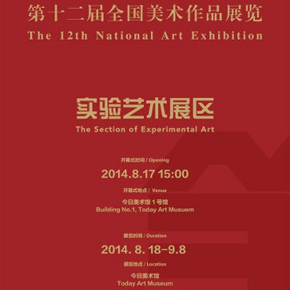 The Section of Experimental Art at the 12th National Art Exhibition to be Presented at Today Art Museum