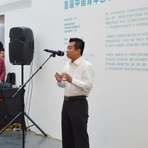 "02 Chen Zhe Director of Cultural Industrial Institute of International Cooperation Center National Development and Reform Commission 290x290 - ""Ivy Art"" First Recommendation Exhibition of Chinese Young Artists Opened at Inside-Out Art Museum"