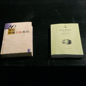 09 Literature on display at the exhibition 290x290 - Polytypic Evolution: A Close-up Observation Opened in Shenzhen to Reflect the Current Situation of Art Education
