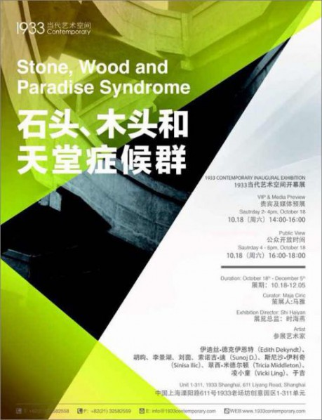 "Poster of""Stone, Wood and Paradise Syndrome"""