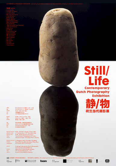 Poster of Still Life Contemporary Dutch Photography