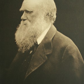 Julia Magaret Cameron Charles Darwin 1880 21x26.4cm 290x290 - Journey of the Heart: Exhibition of Straight Photography Original Print 1839-2014 Presented by the National Art Museum of China