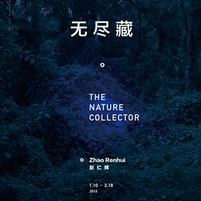 "ShanghART Gallery presents ""The Nature Collector – Zhao Renhui Solo Exhibition"" in January"
