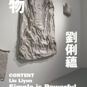 16 Poster 290x290 - Content—Liu Liyun Solo Exhibition Opened at Amy Li Gallery