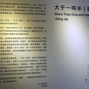 """04 Installation view of the exhibition 290x290 - It Is Not Beautiful, But Important: """"More Than One and Half Tons"""" Returns to be Displayed in Beijing"""
