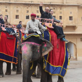 """11 The Jaipur Elephant 290x290 - """"The Oriental Rock-Dyestuff • The Tour to Buddha's Realm"""" Indian Investigation Exhibition at CAFA"""