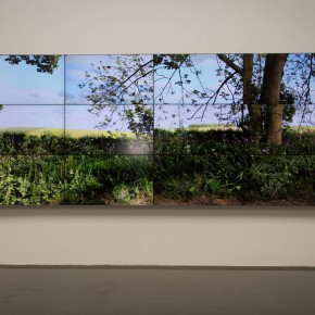 36 Video installations by David Hockney 290x290 - iPad drawings and video installations by David Hockney stir the spring of Beijing