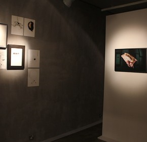 "Exhibition View of Under Pressure by Claire LEE 06 290x280 - Mur Nomade presents the solo exhibition ""Under  Pressure"" by Claire Lee featuring her latest collection"