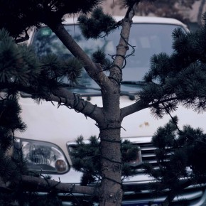 """Feng Yan Pine and Car 2006 138x92cm1 290x290 - Multiple Possibilities of Digital Age–""""The Persistence of Images: 2×6"""" Season I Inaugurated in Guangzhou"""
