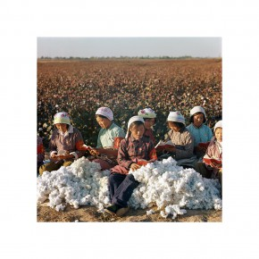 "Weng Naiqiang L11 Cotton Planter 70x70cm 290x290 - Chinese Contemporary Photographic Exhibition ""The Persistence of Images: 2×6"" Opening at Redtory in Guangzhou"