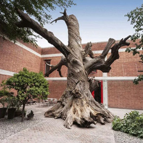 """Chambers Fine Art presents """"Ai Weiwei: Tiger, Tiger, Tiger"""" in Beijing"""