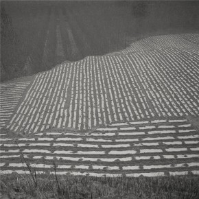 Ta Ke Farmland Below the City 290x290 - The Persistence of Images – Chinese Contemporary Photographic Exhibition Season II Opening July 11 at Redtory in Guangzhou