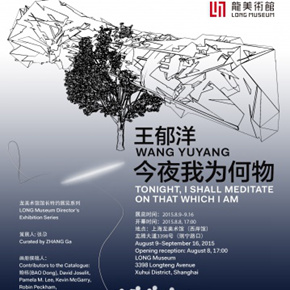 Wang Yuyang: Tonight I shall meditate on that which I am to be Presented at Long Museum