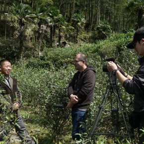 """08 Interviewing Tea Master Wen Yongsheng at Tongmuguan Wuyishan 290x290 - Guangdong Times Museum announces """"Projects of the Hinterland Project: Shi Qing Solo Exhibition"""" opens September 26"""