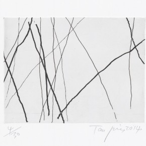 """23 Tan Ping Untitled 290x290 - """"Print Summit – The Communication Exhibition of Print Works by Artists from the East and the West"""" opened at the Gauguin Gallery"""