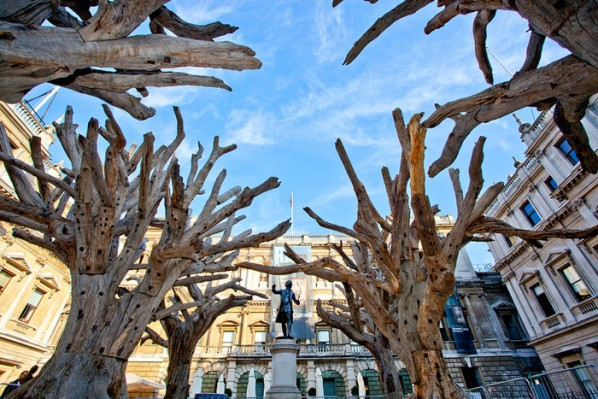 Bring Ai Weiwei's Tree sculptures to London's Royal Academy of Arts, Courtesy www.kickstarter.com