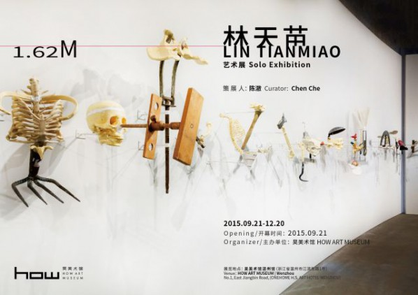 Poster of 1.62M Lin Tianmiao Solo Exhibition
