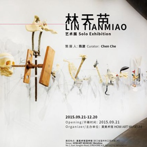 "HOW Art Museum announces ""1.62M: Lin Tianmiao Solo Exhibition"" to be presented in Wenzhou"