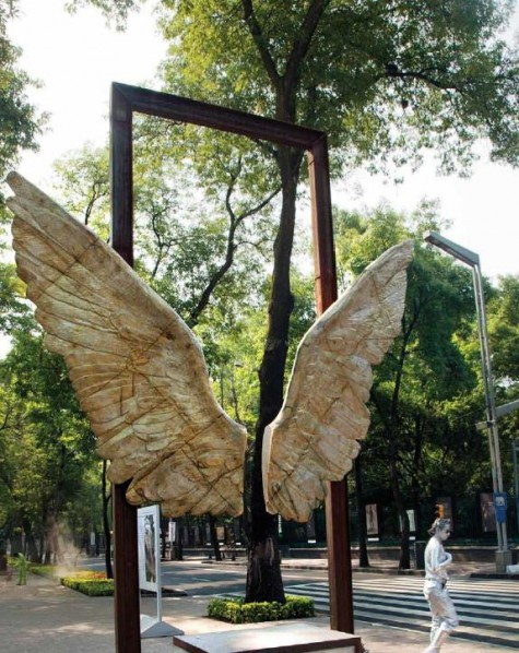 Jorge Marin's Wings of Mexico