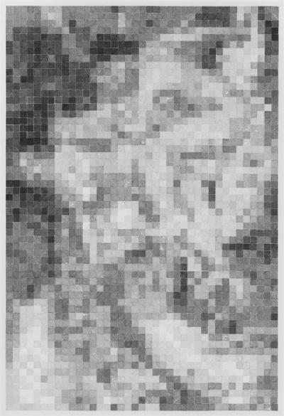 Yang Hongwei, Pixel Analysis No. 6, 2015; print ink on rice paper, 235x156cm