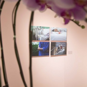 16 Exhibition View of In the Mood for Love – the Exhibition of Female Artists' Growth in Art Forms 290x290 - In the Mood for Love – the Exhibition of Female Artists' Growth in Art Forms is unveiled at the Gauguin Gallery at Wangjing SOHO