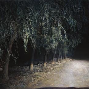 52 Lu Liang Night Ride – Willows 2009 290x290 - Lu Liang