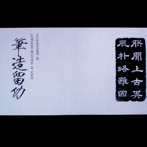 "11 Xu Bing The Character of Characters screen shot 290x290 - The Cultural Landscape and the Reality of Utopias/Heterotopias: ""Wuzhen International Contemporary Art Exhibition"" opened"