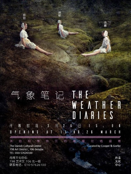 Poster of The Weather Diaries