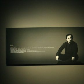 """25 Exhibition View of""""Appearances Formed by Thoughts""""  290x290 - Academic Righteousness during a Leisurely Tour: Yao Mingjing's """"Appearances Formed by Thoughts"""" Exhibiting at the National Art Museum of China"""