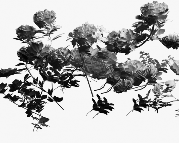 Huang Keyi, Everybody loves peonies No.13, 100x200cm