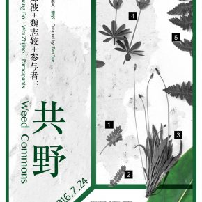 """Poster of Weed Commons 290x290 - Guangdong Times Museum presents """"Zheng Bo + Wei Zhijiao + Participants: Weed Commons"""""""