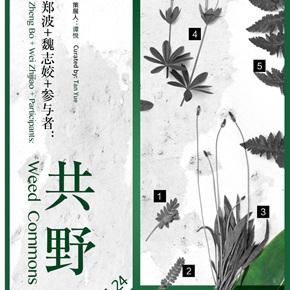 """Guangdong Times Museum presents """"Zheng Bo + Wei Zhijiao + Participants: Weed Commons"""""""