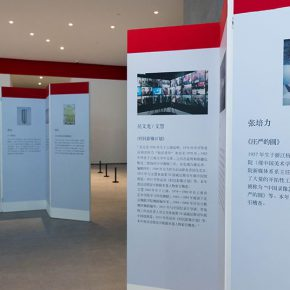 10 Exhibition View 290x290 - The Exhibition of Annual of Contemporary Art of China 2015 Opened at Beijing Minsheng Art Museum to Celebrate Its First Anniversary