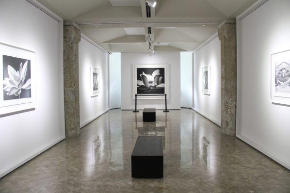 15 Exhibition View