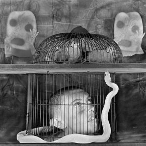 "10 Caged 2011 290x290 - CAFA Art Museum presents ""Roger Ballen: Theater of the Absurd"" featuring his photographic work"