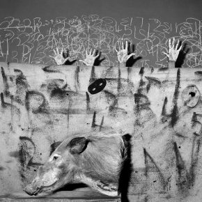 "12 Celebration 2007 290x290 - CAFA Art Museum presents ""Roger Ballen: Theater of the Absurd"" featuring his photographic work"