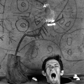 "44 Scream 2012 290x290 - CAFA Art Museum presents ""Roger Ballen: Theater of the Absurd"" featuring his photographic work"
