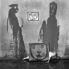 "48 Transformation 2004 290x290 - CAFA Art Museum presents ""Roger Ballen: Theater of the Absurd"" featuring his photographic work"