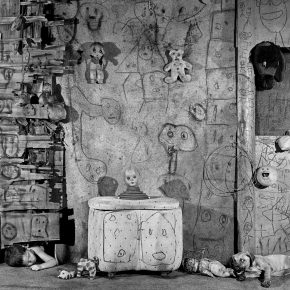 8 Boarding House 2008 290x290 - CAFA Interview丨Roger Ballen: My Photography is Unique