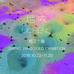 Lichens: Zheng Jiang Solo Exhibition remains on view at Space Station till Nov. 20