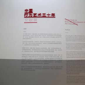 19-exhibition-view-of-the-thirty-years-of-body-art-performance-project-art-documents-in-china