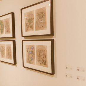 08-exhibition-view-of-herb-garden