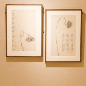 10-exhibition-view-of-herb-garden