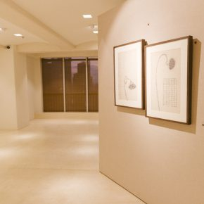 11-exhibition-view-of-herb-garden
